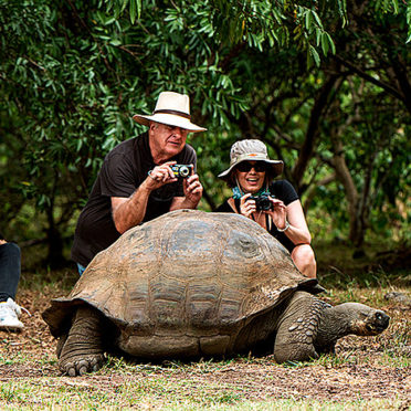 giant-tortoise-travellers-latin-excursions