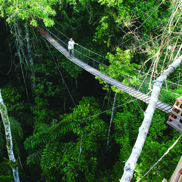day08-10-inkaterra-canopy-walk-latin-excursions