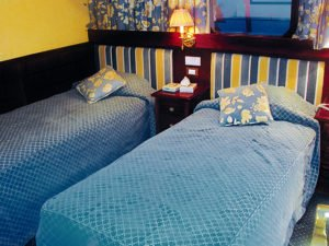 Cabin Twin Beds