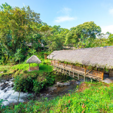 Rustic looking bridge with a thatch roof crossing a river in a cloud forest near Mindo, Ecuador